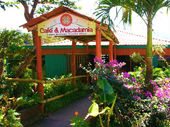 Cafe y Macadamia at Arenal-Guru